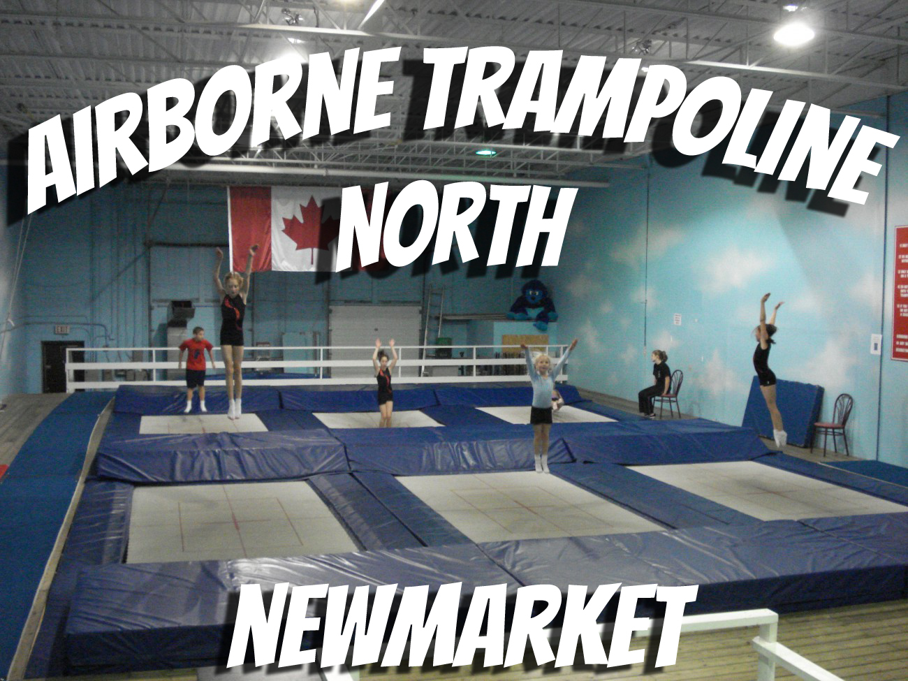 Gymnastics In Newmarket